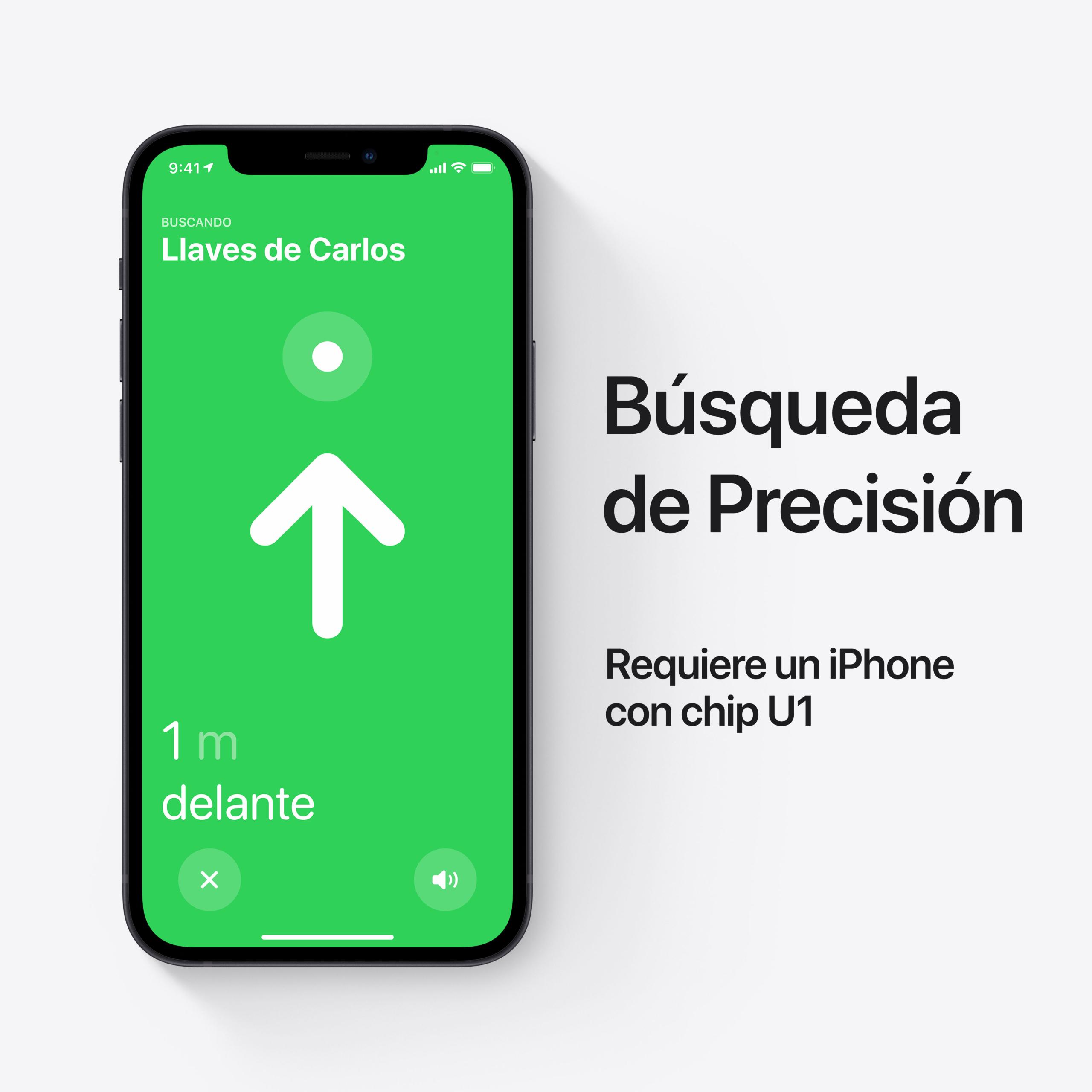 BUSQUEDA DE PRECISION