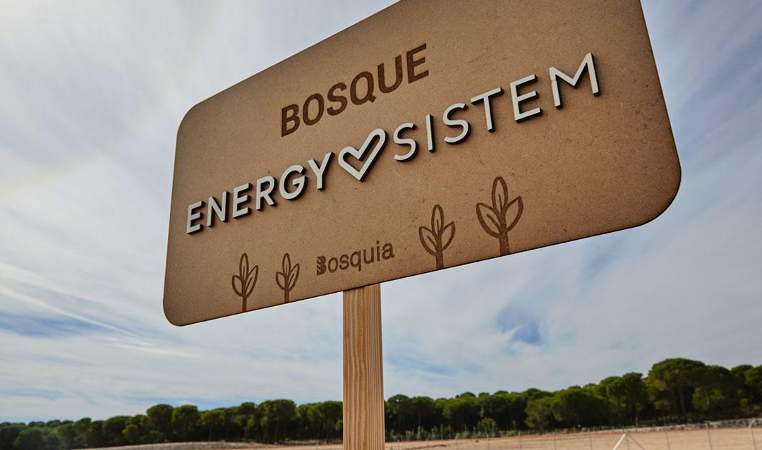 bosque energy sistem
